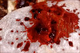 özür kanı nedir, özür kanı ne demek, özür kanı